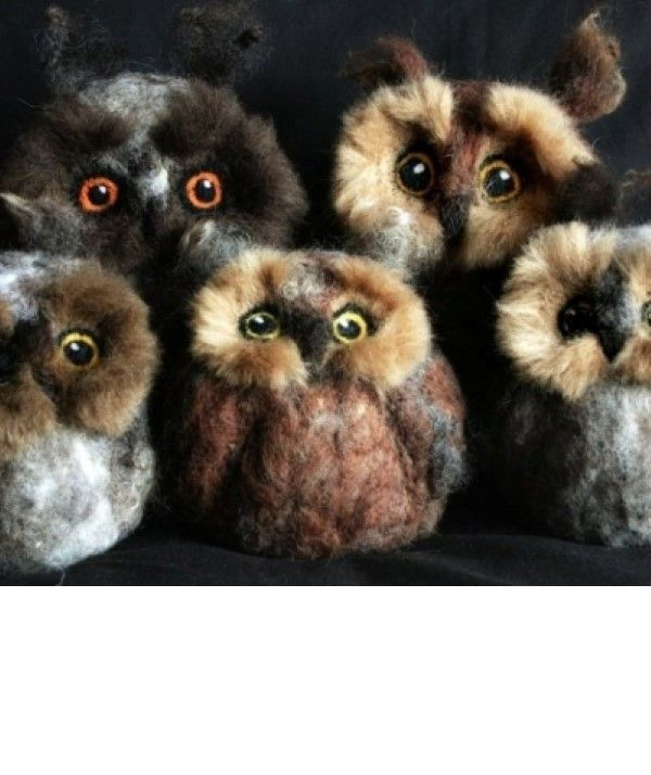 Needle Felt Owls Workshop in Cumbria