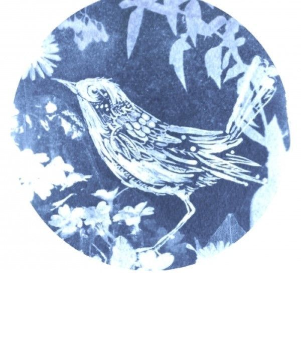 Cyanotype Printing Workshop in Cumbria